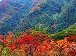 荆紫仙山赏红叶几月去最好?荆紫仙山最佳旅游时间一览