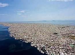 塑料袋设计者初衷为挽救地球 应该重复使用而不是用了就扔