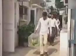 13只鹦鹉法庭当证人 印度新德里法官一脸懵逼