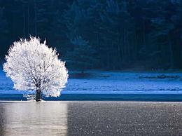 霜降问候短信祝福语怎么说?霜降给亲朋好友祝福的话大全