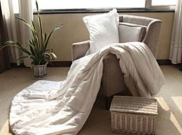 蚕丝被和棉花被哪个好?结婚选择棉被还是蚕丝被