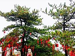 天津盘山红节开始了吗?盘山红叶节旅游攻略收下吧!