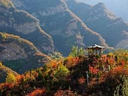 北京赏红叶别去香山了!这些地方的枫叶也不错!