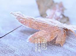 有关霜降的古诗词有哪些