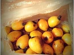 武夷山特色水果有哪些?它们才是水果中的王者