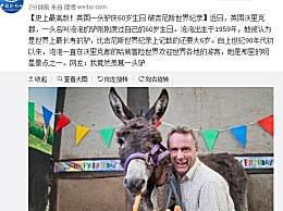 史上最高龄驴大寿 庆60岁生日破吉尼斯记录