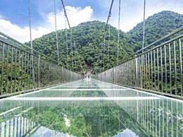 多家景区关停玻璃桥是怎么回事?玻璃桥安全系数很低吗