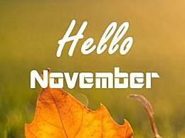 十月再见十一月你好朋友圈说说心情语录 11月你好励志文案(图文)