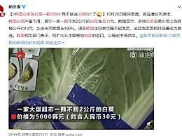 韩国白菜涨价至一颗30块 以后再也不敢说白菜价了