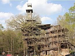 世界最大树屋 堪称童话中的堡垒