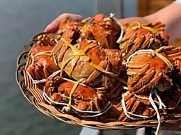 11月份吃公蟹还是母蟹?现在大闸蟹价格卖多少钱一斤
