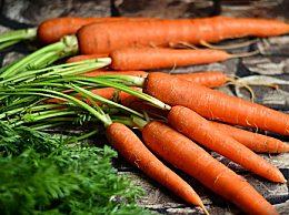 感冒吃什么好?吃萝卜真的能痊愈吗