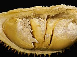 菠萝蜜和榴莲的功效作用一样吗 有什么营养价值