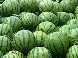 九江特色水果有哪些?九江特色水果汇总