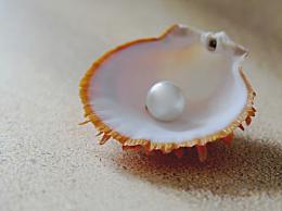 珍珠粉可以美白吗 珍珠粉的功效作用介绍