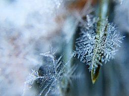 每年立冬的天气怎么样
