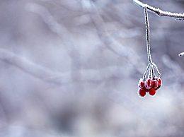 描写冬季雪景的诗句有哪些?描写冬季的诗句大全