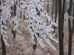 描写立冬的诗句有哪些?立冬节气诗词汇总