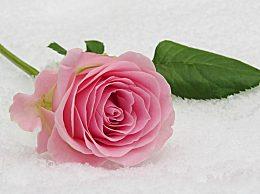 立冬古诗有哪些?有关立冬气节的唯美诗句精选