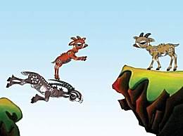 《斑羚飞渡》读后感怎么写?斑羚飞渡读后感范文参考