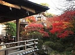 日本泡温泉去哪儿好? 这八大地方都不错!