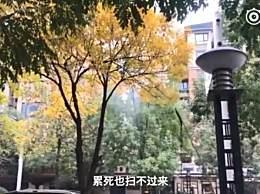 """�h�l用高�核�打�S�~ 只因�I�А傲懵淙~""""要求"""