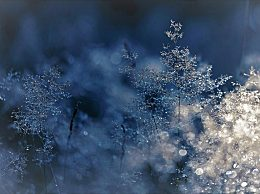 今冬冷冬概率为零 冷冬的划分标准是什么?
