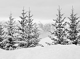 立冬祝福语!关于立冬的祝福语大全