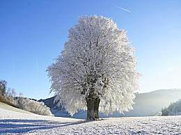 中国最美雪乡在哪儿?雪乡门票多少钱?