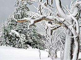 立冬前一个节气是什么?立冬前后节气分别是什么