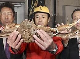 世界上最贵的螃蟹 一只要32万天价