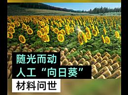 人工向日葵材料问世 可吸收400%太阳能