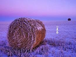 有关立冬的诗句有哪些?立冬古诗词大全汇总