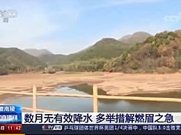 安徽51个市县遭遇重度干旱 居民遭遇用水难