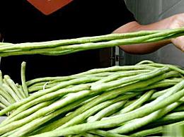 豇豆怎么读 豇豆的读音是什么 豇豆的汉语拼音介绍