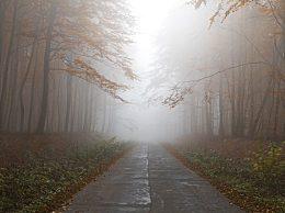 雾霾天气对人体的危害有哪些?雾霾天气的危害及注意事项