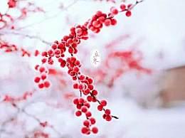 立冬节气的由来及意义 立冬的民间习俗有哪些