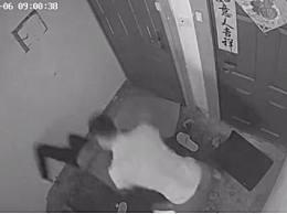 窃贼偷进特警家 窃贼偷进特警家被撂倒控制