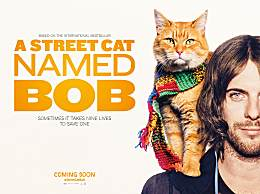 流浪猫鲍勃拍续集 男主角回归扮演街头艺人