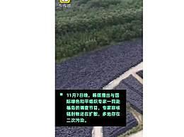专家称福岛已被二次污染 日本教承认核污染已进入水流