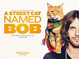 流浪猫鲍勃拍续集 预计2020年上映