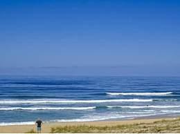 海滩漂来钻石包裹 钻石包裹从哪来里面是什么
