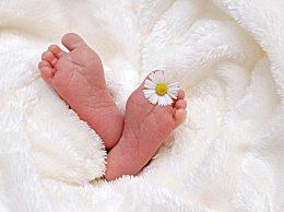 宝宝肚脐突出怎么办?新生儿脐带发炎是什么情况