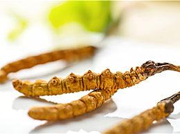 今年冬虫夏草多少钱一斤?冬虫夏草的功效作用是什么