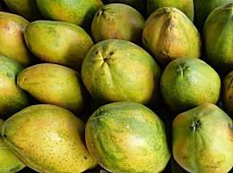 潮汕有哪些特产水果?潮汕最出名水果汇总