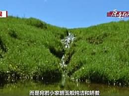 黄河发源地在哪儿?黄河的源头仅是碗口大小的泉眼