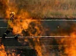 悉尼面临灾难级火灾风险 消防部门严阵以待