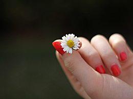 涂指甲油有哪些危害?劣质指甲油的危害更为严重