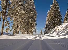 雪乡还坑人吗?雪乡旅游必玩攻略