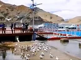 世界上最牛湖泊 一分为二两国分别管理